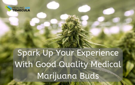 Spark Up Your Experience With Good Quality Medical Marijuana Buds