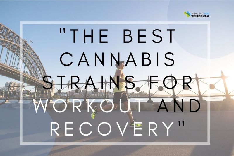The Best Cannabis Strains For Workout And Recovery