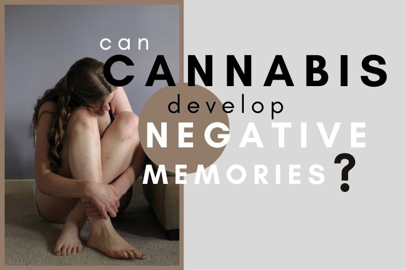 Are Heavy Cannabis Users More Prone To Developing Negative Emotions?