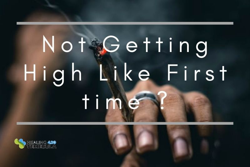 The Most Common Factors That Affect Your Cannabis High