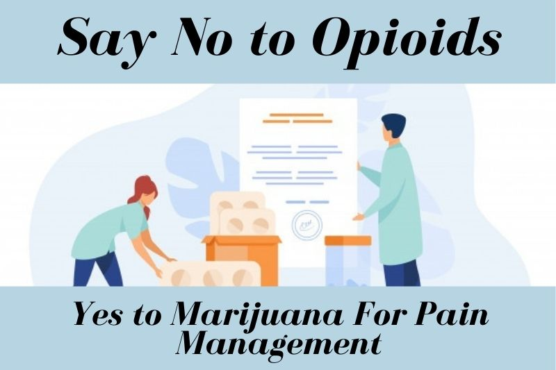 Say No to Opioids & Yes to Marijuana For Pain Management