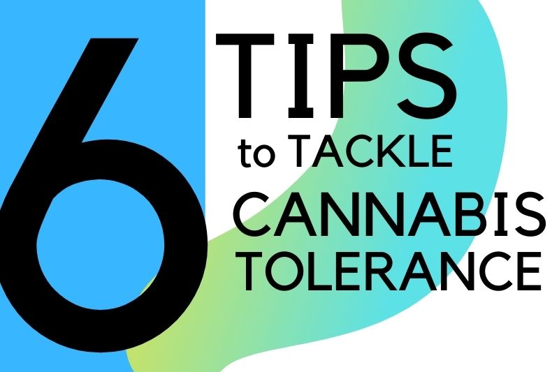 6 Tips to Tackle The Dreaded Cannabis Tolerance