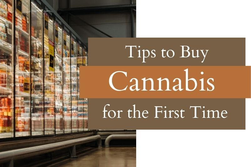 Tips to Make Your First Cannabis Dispensary Visit Successful