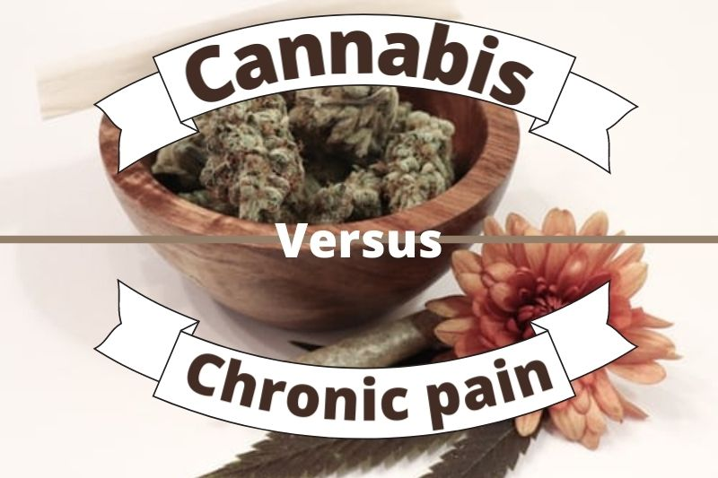 How Getting an MMJ Card Online Helps You Ease Chronic Pain?