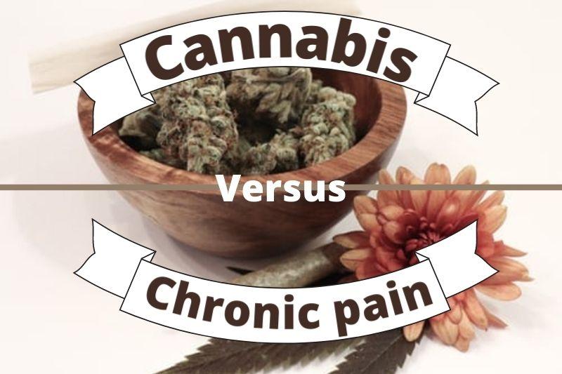 Can Cannabis Help With Chronic Pain?